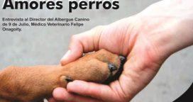 Amores perros…