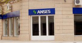 ANSES informa