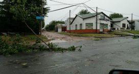 El temporal castigó a gran parte de la provincia