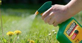 Otro golpe para el herbicida Roundup de Monsanto (y el campo alerta)