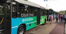 Biodisel, se incrementa el uso en las provincias