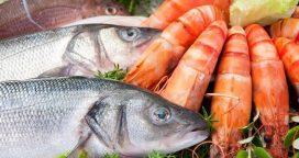 Pescados y mariscos: Impulso al consumo